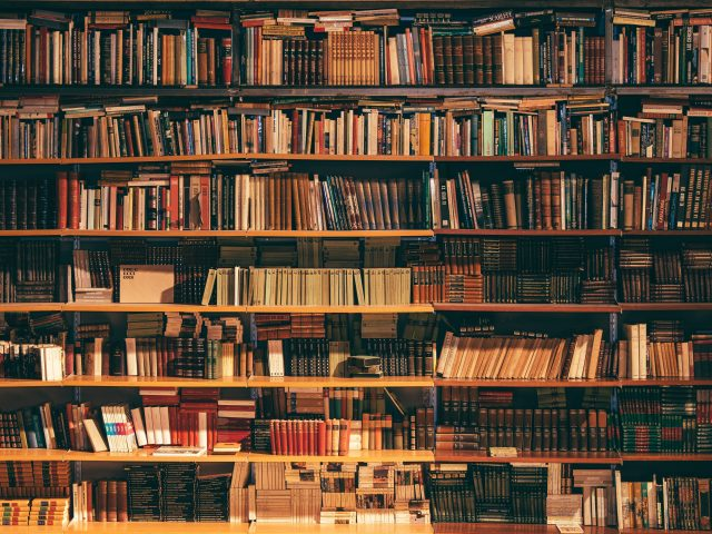 What is in a Scoping Literature Review?